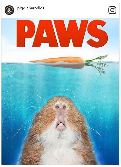 Piggie Parodies Paws poster