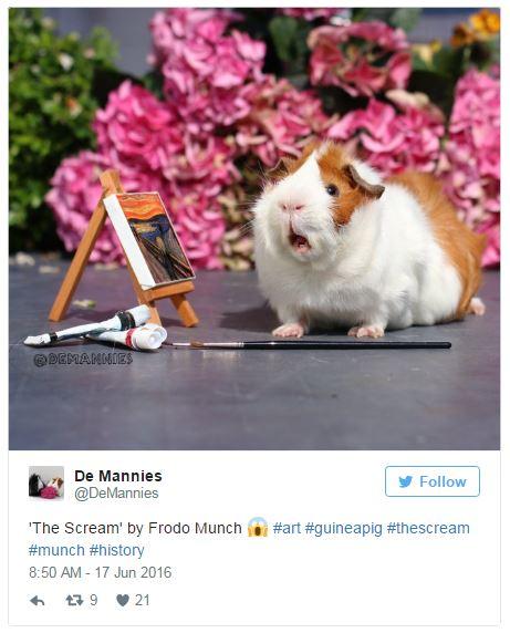 'The Scream' guinea pig art meme