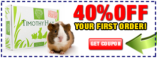 Timothy hay coupon