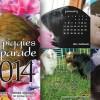 Guinea Pig Calendars for 2014