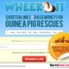 Celebrate National Adopt a Rescued Guinea Pig Month